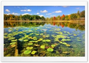Beautiful Lake Scenery, Autumn