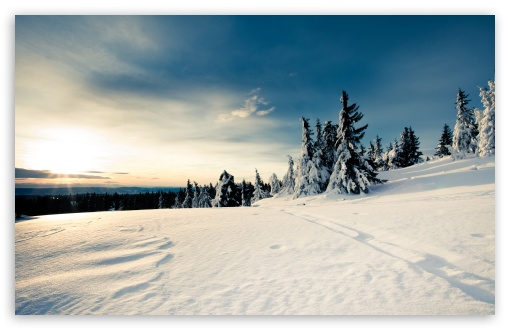 Download Winter Sun UltraHD Wallpaper