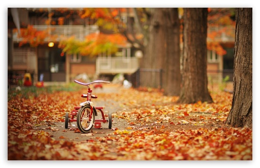 Download Tricycle UltraHD Wallpaper