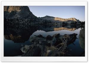 Lake Driftwood