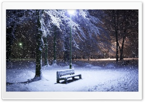 Lone Bench Covered In Snow
