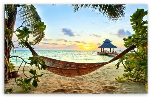 Download TROPICAL PARADISE UltraHD Wallpaper