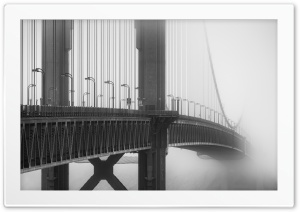 Golden Gate Bridge Fog Black...