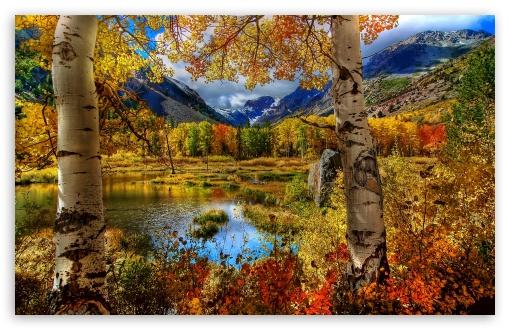 Download Perfect Autumn Scenery UltraHD Wallpaper