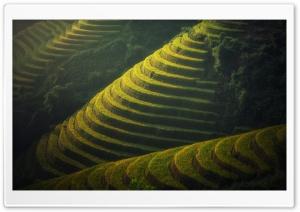 Beautiful Rice Terraces...