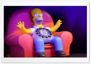 Homer Calls Home