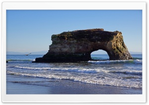 Natural Bridges State Beach,...