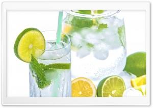 Lemon Lime Mint Soda Fresh...