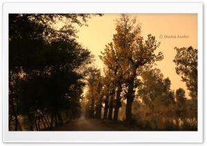 Autumn by Mustafa Abad Lalyani