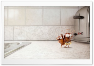 Funny Cute Cockroaches 3D