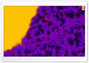 Creative Flora by AJ