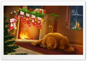 Warm Christmas Night