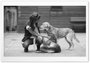Love For Pets