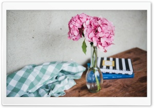 Pink Hydrangea Flowers in...
