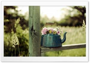 Flowers   Creative Idea