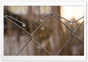 Mesh Fence Close Up