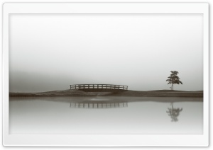 Calm Water, Bridge, Tree...