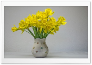 Easter Daffodils in a Vase,...