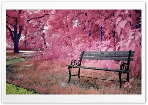 Lonely Park