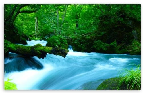Download Oirase Mountain stream, Japan UltraHD Wallpaper