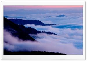 Mount Rainier National Park,...