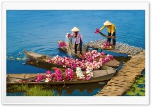 Water Lilies Flowers,...