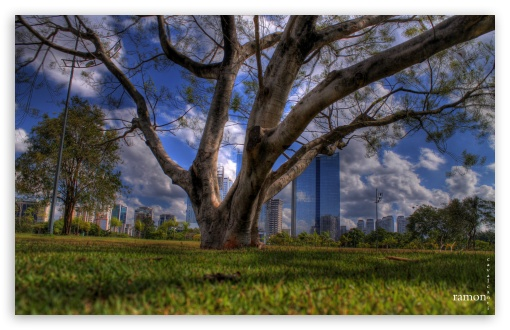 Download Point of View 20 UltraHD Wallpaper