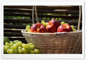 Nectarines And Grapes
