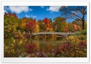 Bow Bridge, Central Park, New...