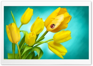 Ladybird and Yellow Tulips in...