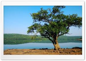 Beautifull Lake