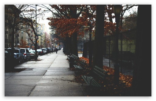 Download Cold Autumn Day In New York City UltraHD Wallpaper