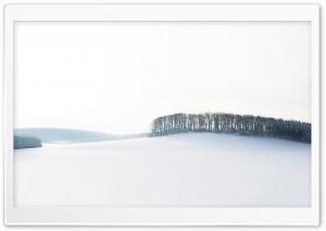 Forest Skyline Winter