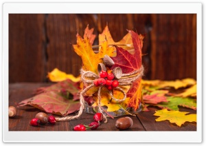 Autumn Leaves, Rowan berries,...