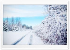 Road, Winter