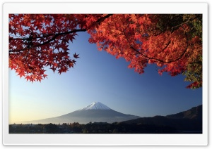 Autumn, Mount Fuji, Japan