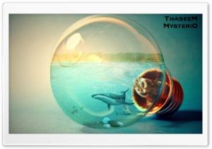 The Light Bulb - Thaseem...