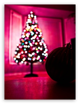 Download Christmas Tree Bokkeh UltraHD Wallpaper