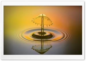 Mushroom Water