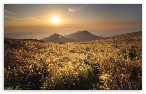 Download Mountain Top Meadow UltraHD Wallpaper