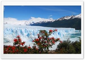 GLACIAL - CHILE