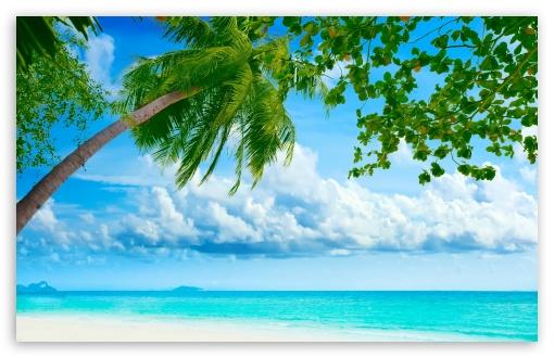 Download Tropical Beach Resorts UltraHD Wallpaper