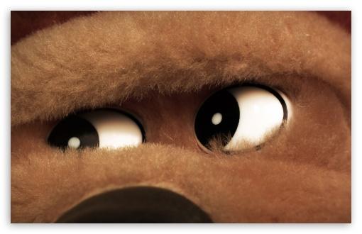 Download Teddy Bear Eyes UltraHD Wallpaper