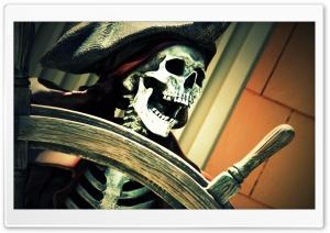 Pirate On Board