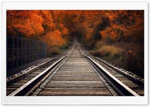 View From Railway Bridge Autumn