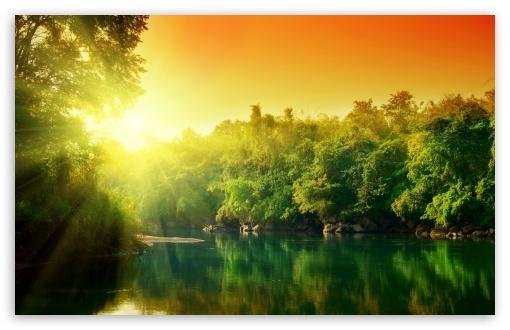 Download Forest River UltraHD Wallpaper