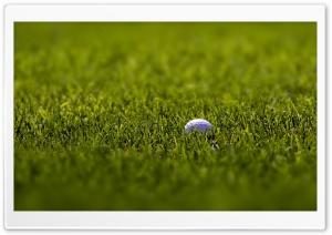 Golf Ball Macro