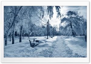Park Under Snow Bench