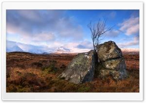 Rannoch Moor Land, Scotland