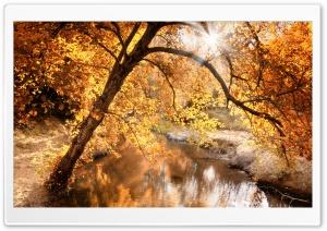 Creek, Autumn